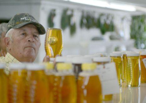 Open Class Honey Judging at Dodge County Fair